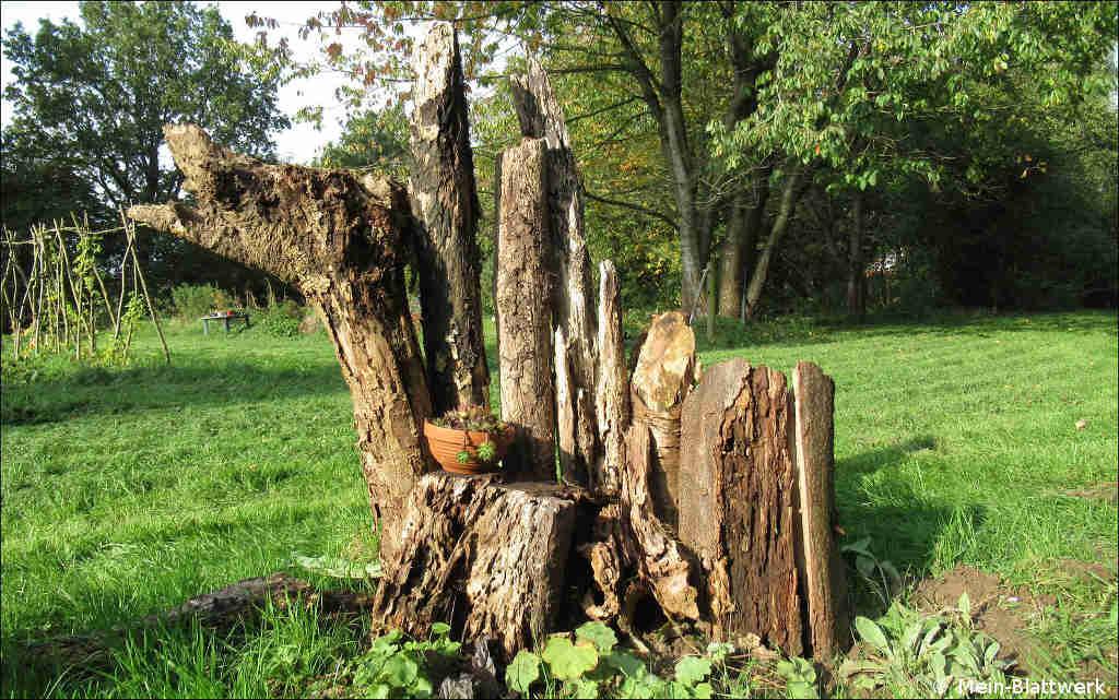 Totholz, Deko im Garten