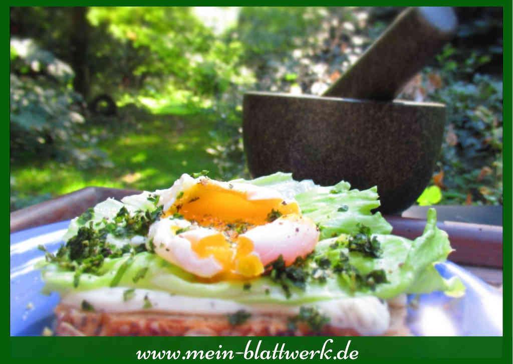 pochiertes Ei auf schmackhaftem Brot
